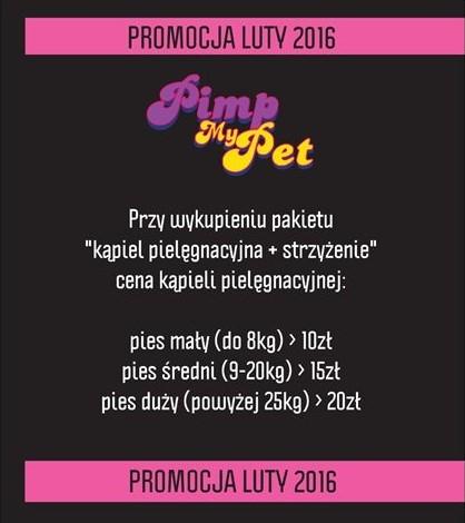 plakat promocja luty (3)